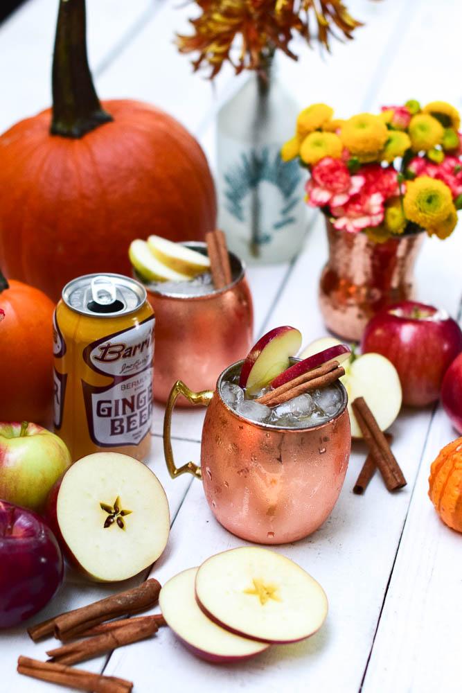 Apple Cider Kentucky Mule Recipe_ Natalie Paramore