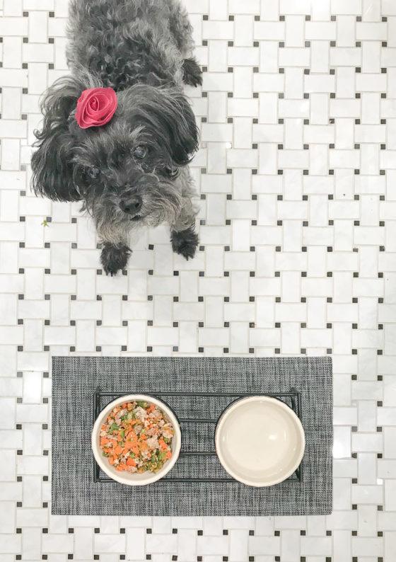 Healthy Homemade Dog Food Recipe_Natalie Paramore