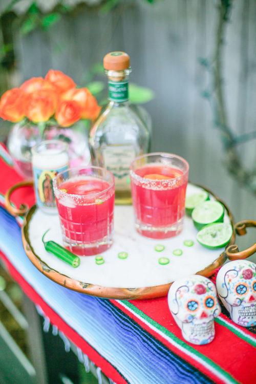 Prickly Pear Margarita Recipe with Natalie Paramore 2