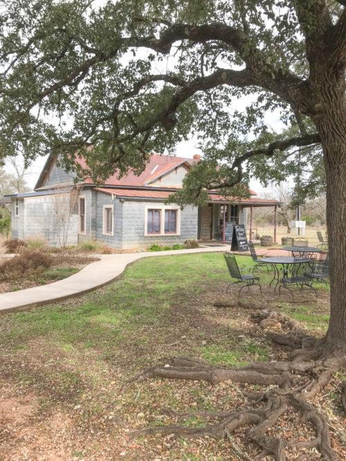 William Chris_Weekend Getaway To Fredericksburg, TX_Best Wineries in Fredericksburg TX_natalie Paramore